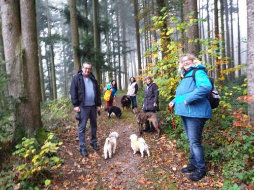 Spaziergang in Neydharting 3.11.2019